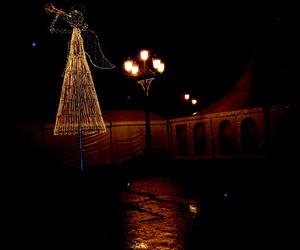 Galería de Carpas en Coristanco | Carpas Facal