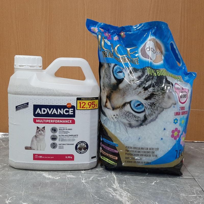 Arena gatos: Servicios de Clínica Veterinaria Rocafort