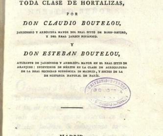 La Huerta de Iván: Huertos de Huertos Azor