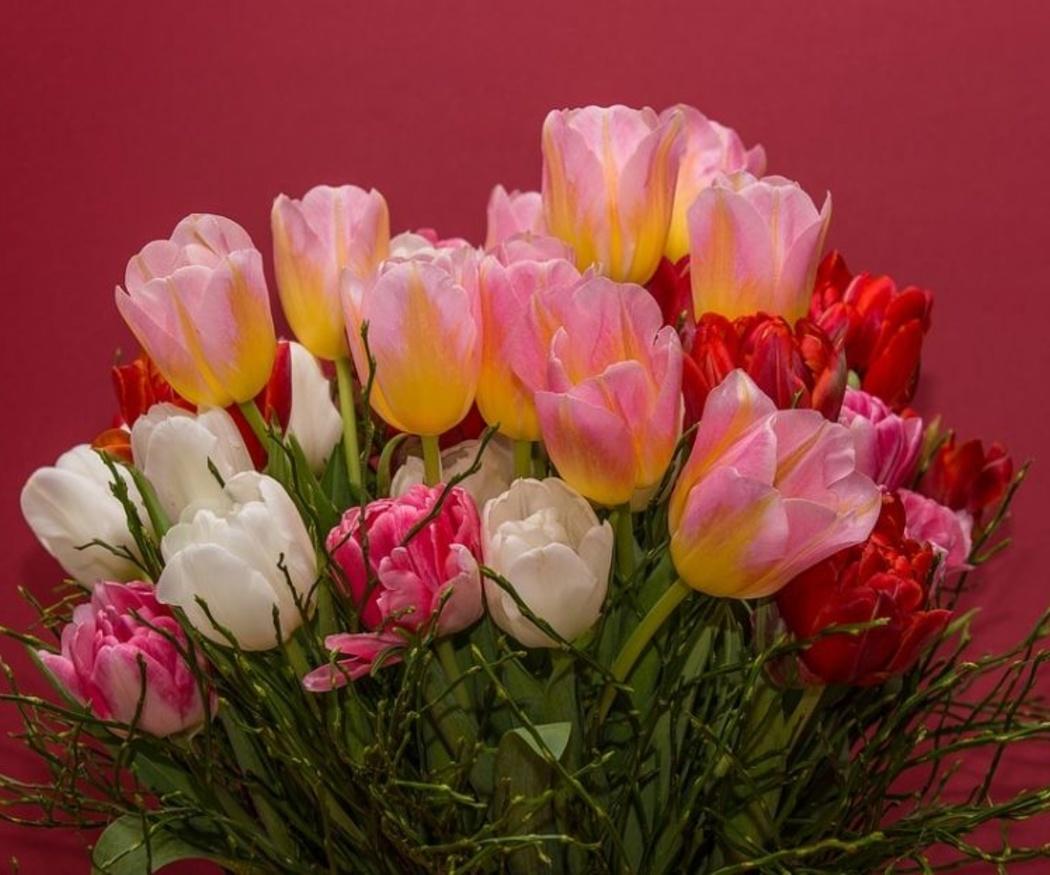 Ocasiones para decir 'gracias' o 'felicidades' con flores
