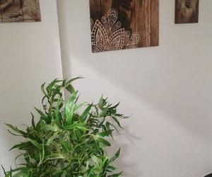Masajes Fco. Jelusich en Herboristería Fiuncho