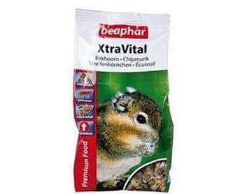 Alimentación para gatos: Productos y Servicios de Zoolife - Clínica Veterinaria