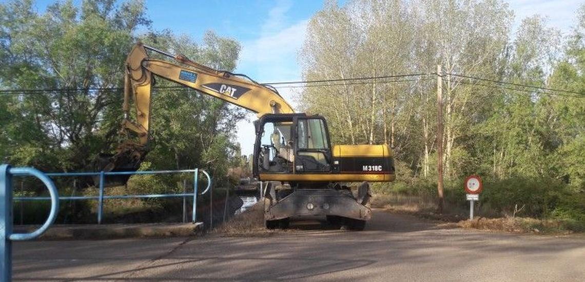 Acondicionamiento del terreno para la plantación de chopos en León