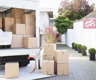 Transporte de objetos pesados: Catálogo de Transportes Peña