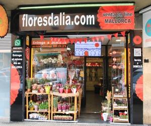 Floristería floresdalia.com