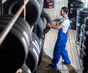 Neumáticos en Viana de Cega