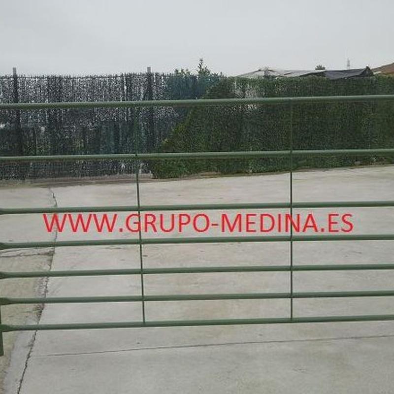 TELERA DE TUBO CON PARTE INFERIOR MAS DENSA: NUESTROS PRODUCTOS de Grupo Medina