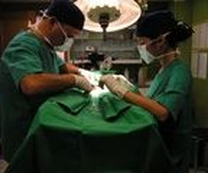 Cirugía: Servicios de Clínica Veterinaria 9 d'Octubre