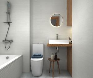 Opción 1 alicatado baño 1