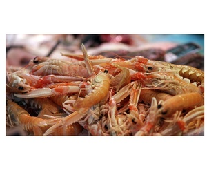 Todos los productos y servicios de Restaurante de mariscos y pescados: Casa Navarro