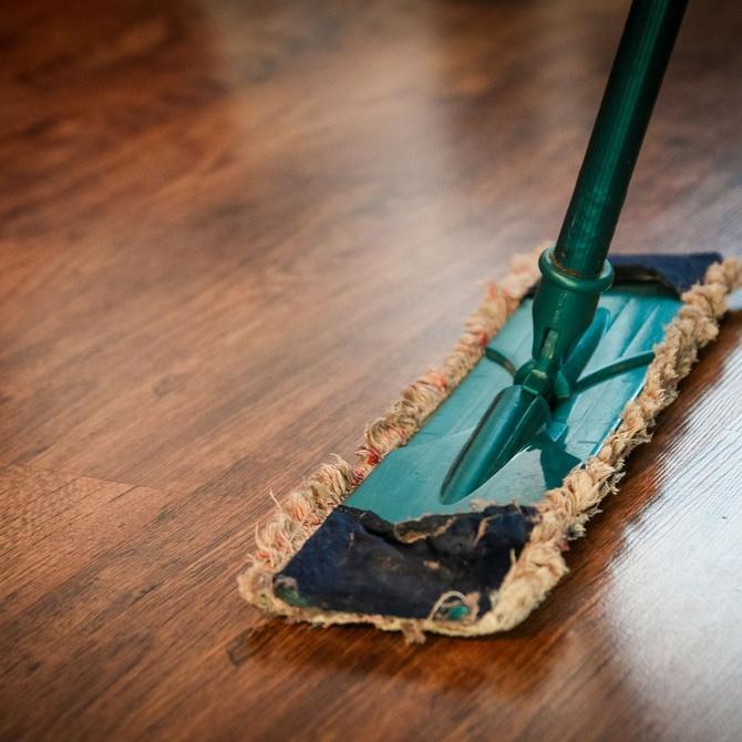 Limpieza en casas con animales