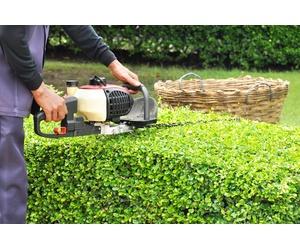 Todos los productos y servicios de Empresas de limpieza: Abbey Facilities Services