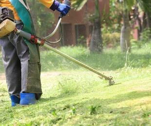 Mantenimientos de jardines y grandes superficies