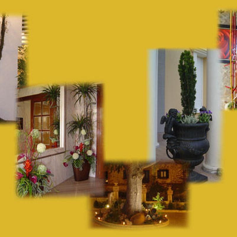 Interiores y exteriores : Catálogo de Floristería Mª Teresa