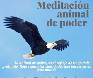 Meditación animal de poder