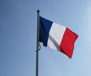 Carta de platos combinados en francés