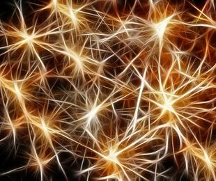¿Qué cambios cognitivos se producen durante el envejecimiento patológico?