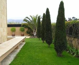 Decoración de jardines en Tenerife