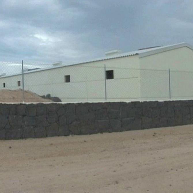Ventajas de construir unas estructuras de calidad para el ganado