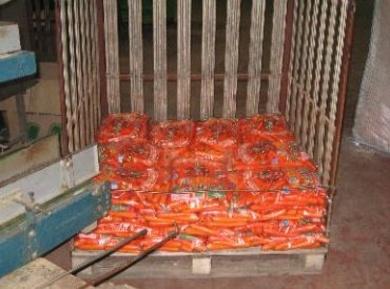 Distribución de zanahorias
