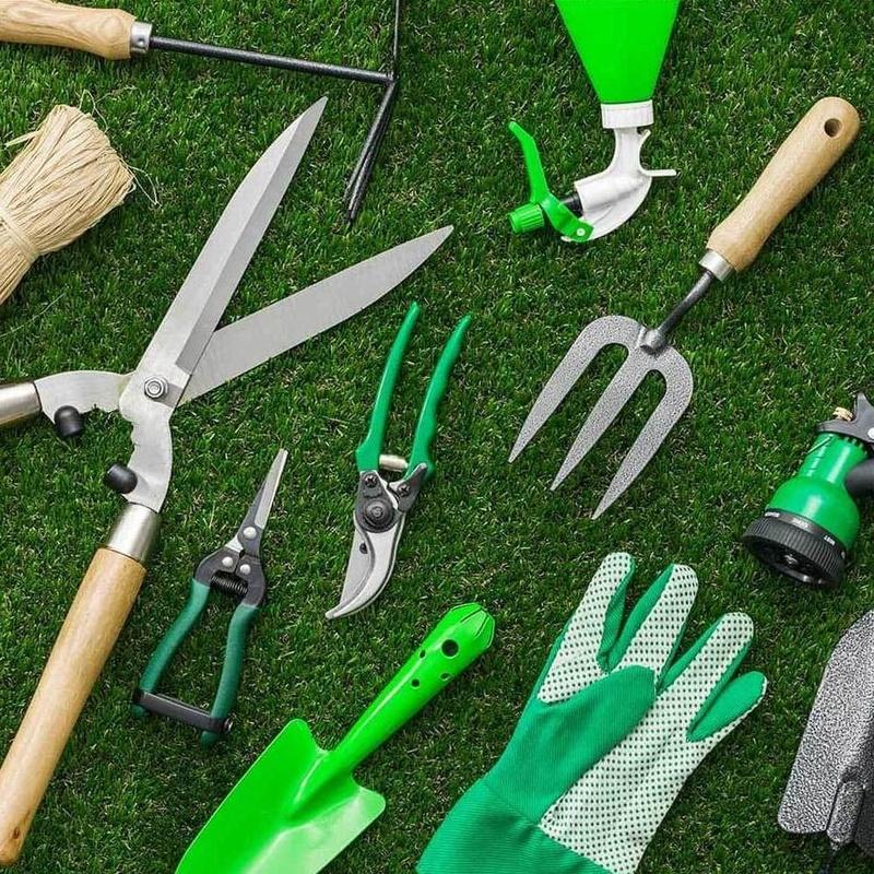 Material de trabajo y marcas: Servicios Y Productos de Món Verd / Mundo Verde / Green World