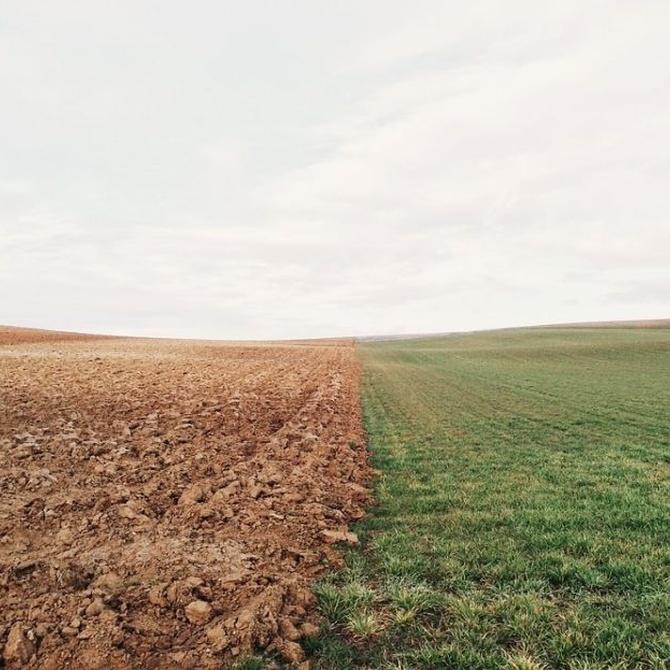Los distintos tipos de suelos