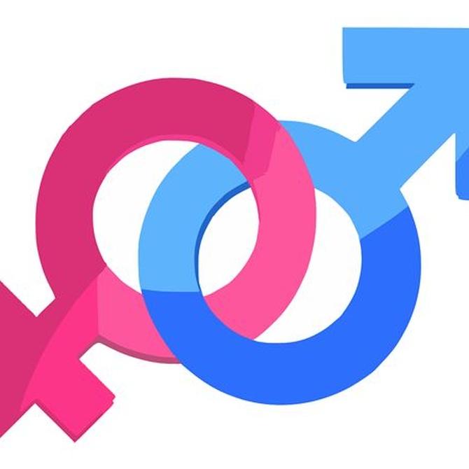 ¿Qué es la identidad sexual?