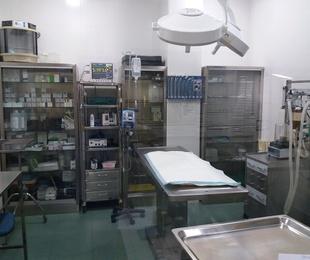Todo tipo de servicios médicos y quirúrgicos