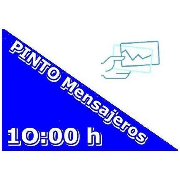 Servicios del día siguiente: Servicios de Pinto Mensajeros
