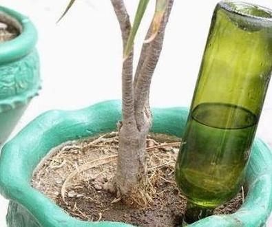 Como hacer un sistema de riego casero