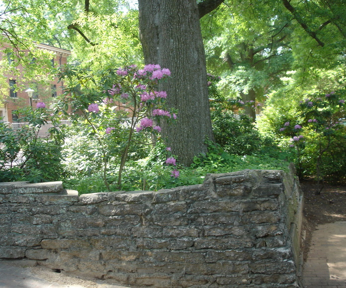 Otros servicios disponibles : Servicios  de Jardinería Garrotxa