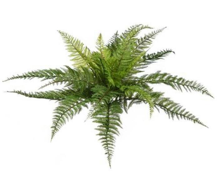 Planta artificial exterior