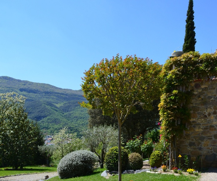 Mantenimiento de jardines y huertos: Servicios  de Jardinería Garrotxa
