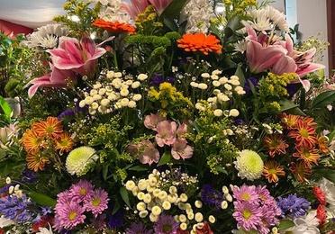 Centros de flores y plantas