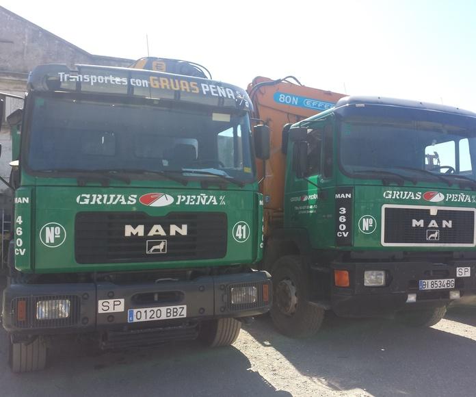 Flota: Servicios de Camiones con Grúas Peña