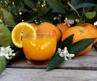 Naranjas de zumo pequeño 20kg