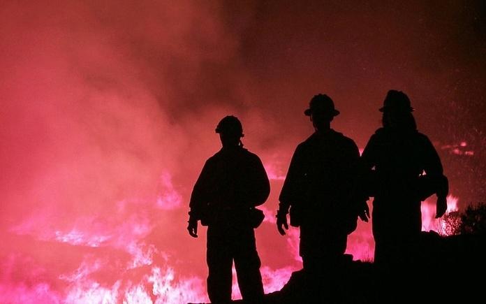 Servicio de vigilancia y extinción de incendios forestales: Servicios de Cofoso