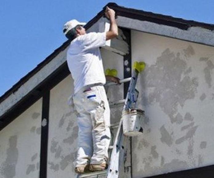 Pintura de exterior: Servicios de Karlos Xavier, S.L.U.