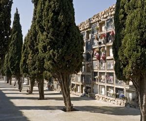 Mantenimiento de cementerios en Santiago de Compostela