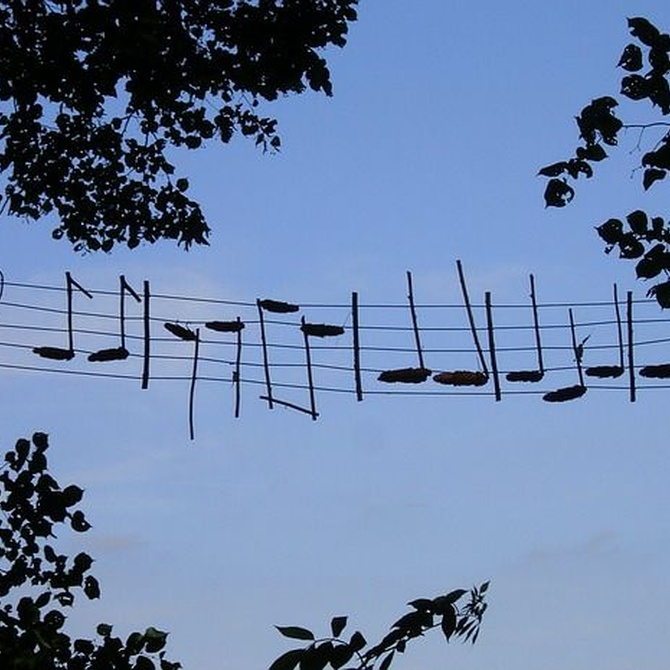 Beneficios de aprender a tocar un instrumento