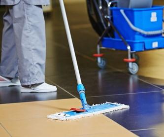 Limpieza: Servicios y sectores de Eosnet