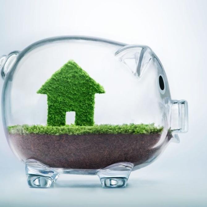 Economía y ecología en tus compras