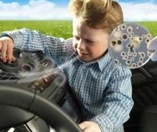Microorganismos perjudiciales en el circuito del aire de tu vehículo