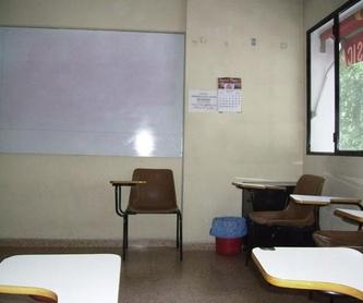 Los grupos de alumnos: Centro de enseñanza   de Academia Simaer