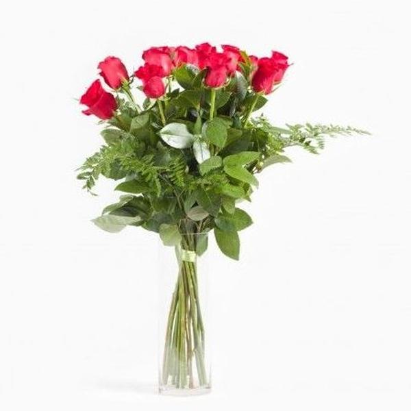Rosas rojas de tallo largo: Catálogo de Flores Freesia