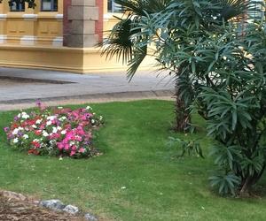 Mantenimiento de jardines para partículares y comunidades de vecinos