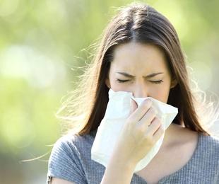 Alergias y sistema inmunológico