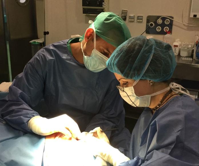 Centro Médico Bellón. Cirugías: Tratamientos de Centro Médico Bellón