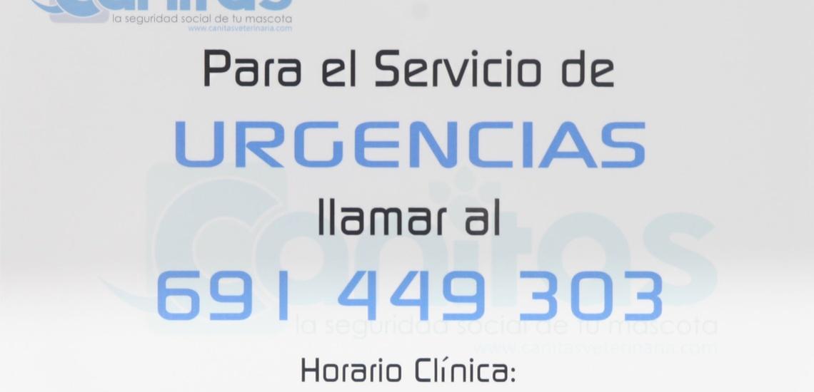 Teléfono de Canitas para urgencias veterinarias en Huelva