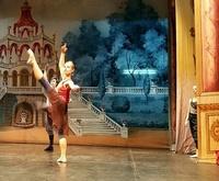 Profesorado de Danza Clásica (infantil y adulto)